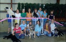 Junior Scouts learn dog tips from 4-Hers