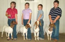 Riffels claim high honors at Hutchinson goat show