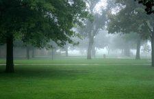 Saturday fog brings eery presence to college campus