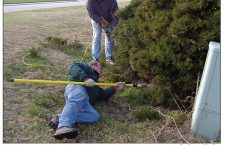 Kiwanis Club helps with tree trimming at golf course
