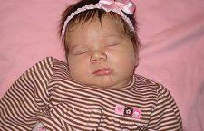 Births (Week of Nov. 19, 2008)