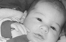 Births (Dec. 17, 2008)