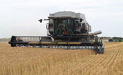 HarvestKlassenFront166
