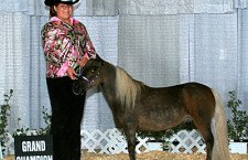 Martin horse takes first at state fair