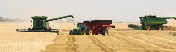 2013 wheat crop generated record bushels in county