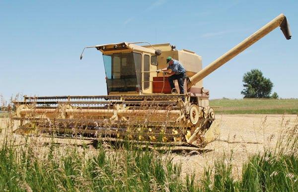 'Lehigh boys' lend a hand for Kessler family harvest