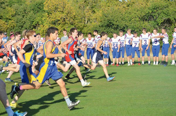 Knolla leads Warriors at league