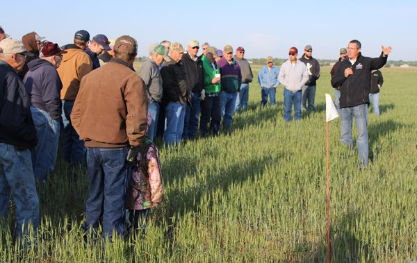Tour underlines state of wheat crop