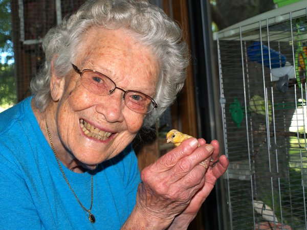 'Birds have always been my thing,' says canary fan