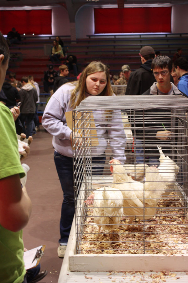 Centre FFA competes at Marion