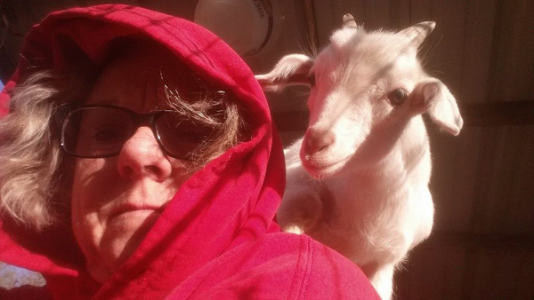 Goats make the perfect pet for Florence woman