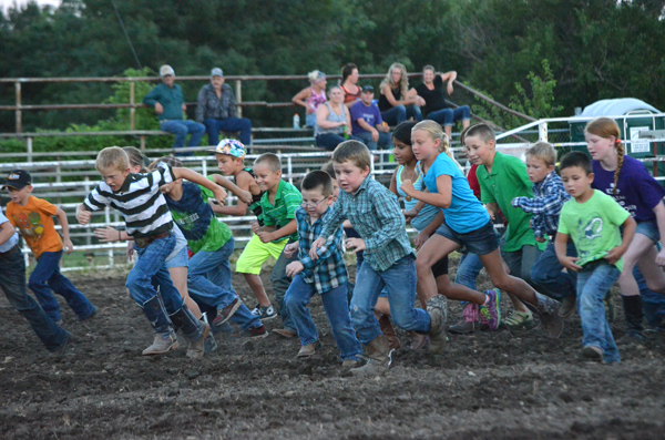 Children participate in the calf scramble during Thursday night?s rodeo. Ten winners each received $10, and all participants were given a coupon for a free ice cream treat. The calf scramble was held Wednesday and Thursday nights. Janae Rempel / Free Press
