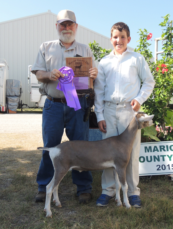 Philip Young of the Peabody Achievers showed the grand champion dairy wether goat.  Courtesy photo by Rickey Roberts