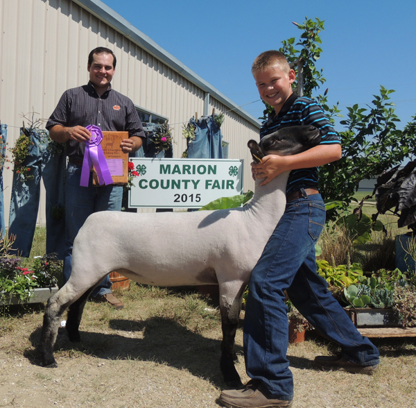 Landon Roberts showed the grand champion breeding ewe Courtesy photo by Rickey Roberts