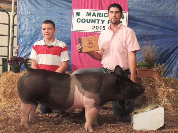 Jensen Riffel of the Tampa Triple T?s showed the grand champion breeding gilt at this year?s fair. Courtesy photo by Rickey Roberts