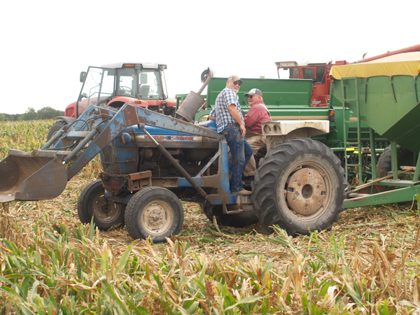 Corn cut, but soybeans and milo harvest still in question