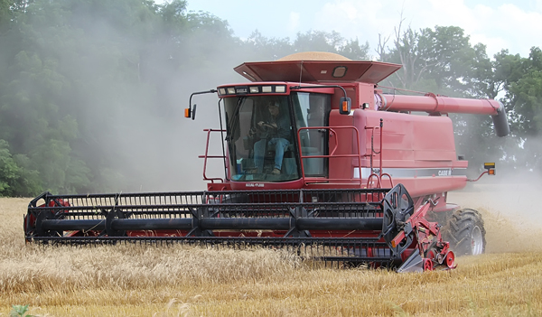 Wheat yields mostly good for county harvesters