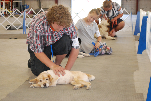 4-H dog show on Saturday opens this year's Marion County Fair