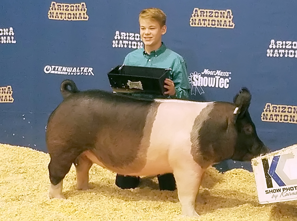 Landon Roberts placed first  in the cross gilt class at the Arizona National Livestock Show in Phoenix, Ariz., in late December.