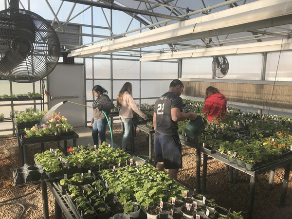 Spring in the air at Centre Greenhouse; open house set for April 21