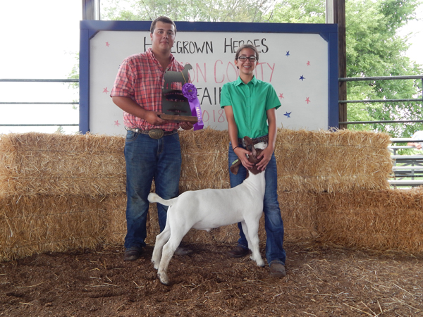Courtesy Photo Ashley Peters - Grand Champion, Breeding Goat