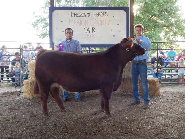 Courtesy Photo Charlie Peters - Grand Champion, Market Beef