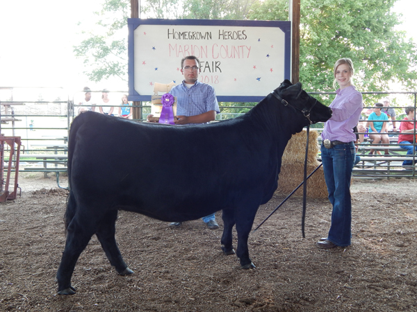 Courtesy Photo Madeline Meier - Grand Champion Breeding Beef