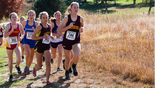 Hillsboro hits state cross country