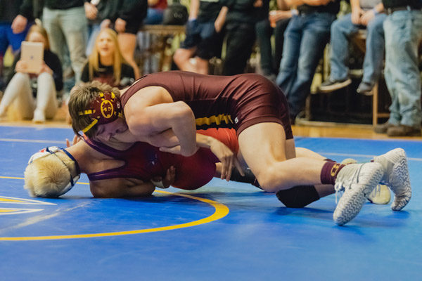 Bachman places at state wrestling